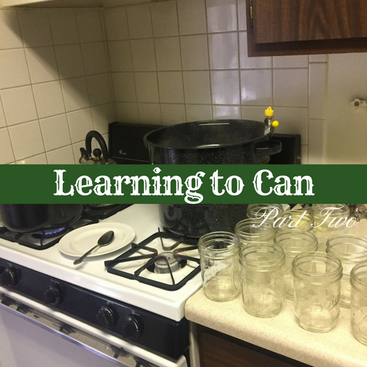 Learning to Can, Part 2