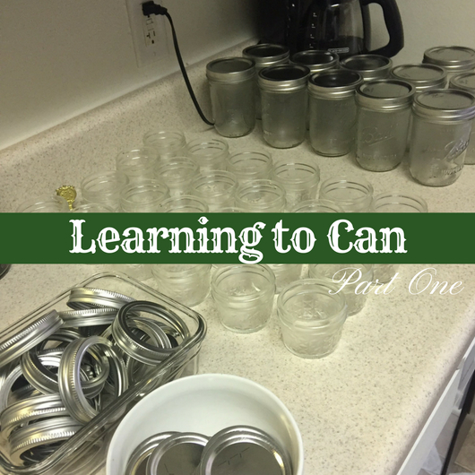 Learning to Can, Part 1